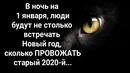 Светлана Демчинкова фотография #19