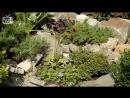 Ландшафтный дизайн сада 🌟 Альпийская горка своими руками ➡ Мастер класс эксперт