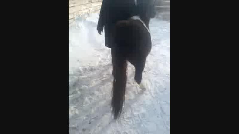 Video-2012-01-01-12-28-42