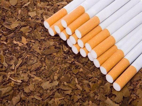 """""""Мочевина (вещество, которое содержится в моче) добавляется в сигареты для допол..."""