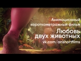 Анимационный короткометражный фильм «Любовь двух животных» от ISART DIGITAL