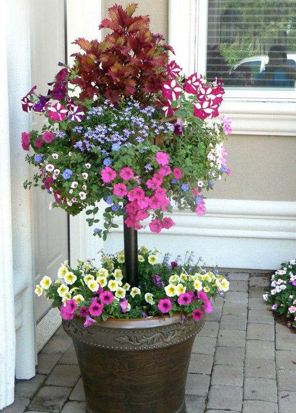 Двухуровневые контейнеры для цветов - делаем сами
