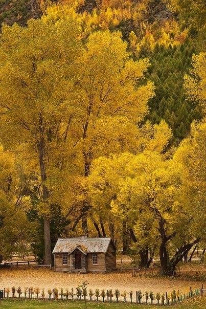 Ну вот и подкралась незаметно золотая осень..! Поздравляем всех с праздником!:) Пусть Вы и Ваши детки всегда будете здоровы!