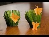 Бабочка из моркови и Лужайка из огурца