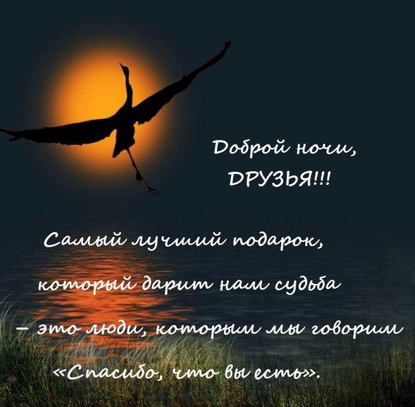http://cs409622.vk.me/v409622714/78fa/sjYFo25nfdY.jpg