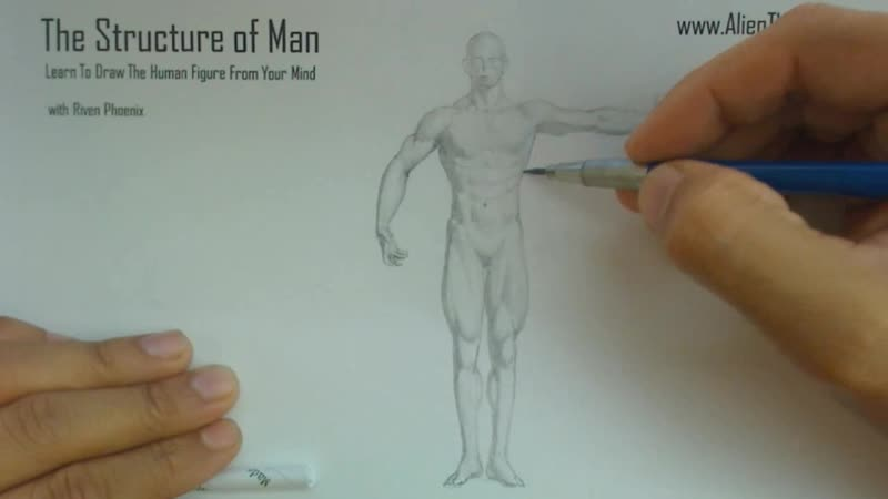 The Structure Of Man HD - 4 - Human Proportions Basics_01