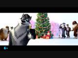 Волки и Овцы: Ход Свиньёй — С Новым годом!