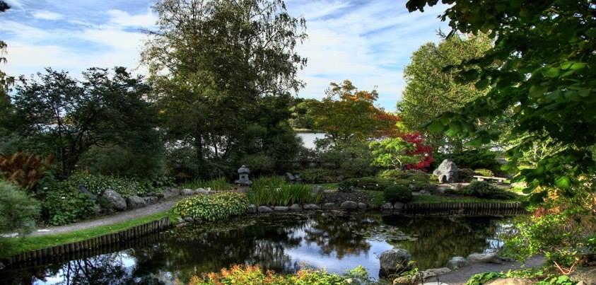 Бергианский ботанический сад. Стокгольм P5Ef-pUsaYA