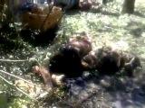 Война на окраине 2014 Горловка 27 июля 12:45. 8 убитых в результате обстрела украинским Градом