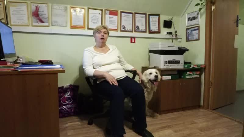 ответ Учебно-кинологического центра собаки-помощники инвалидов