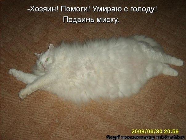 http://cs616018.vk.me/v616018731/1a06a/GN_BR2x4xoU.jpg