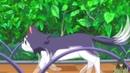 Joukamachi no Dandelion Город замок Данделион DJ Valdi Kato Jimenez Jesus Sanchez Borracha AMV anime MIX anime REM