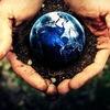 Познание мира — энциклопедия жизни