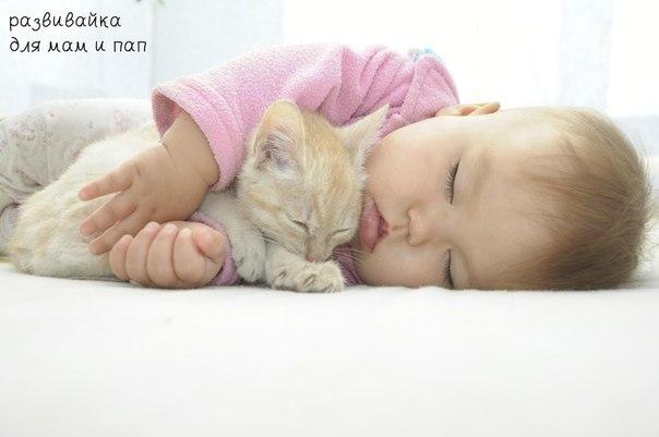 Маленькое солнышко спит со мною рядом.