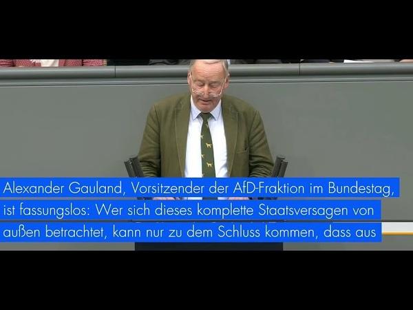 Tim Kellner Der komplette Irrsinn in Deutschland