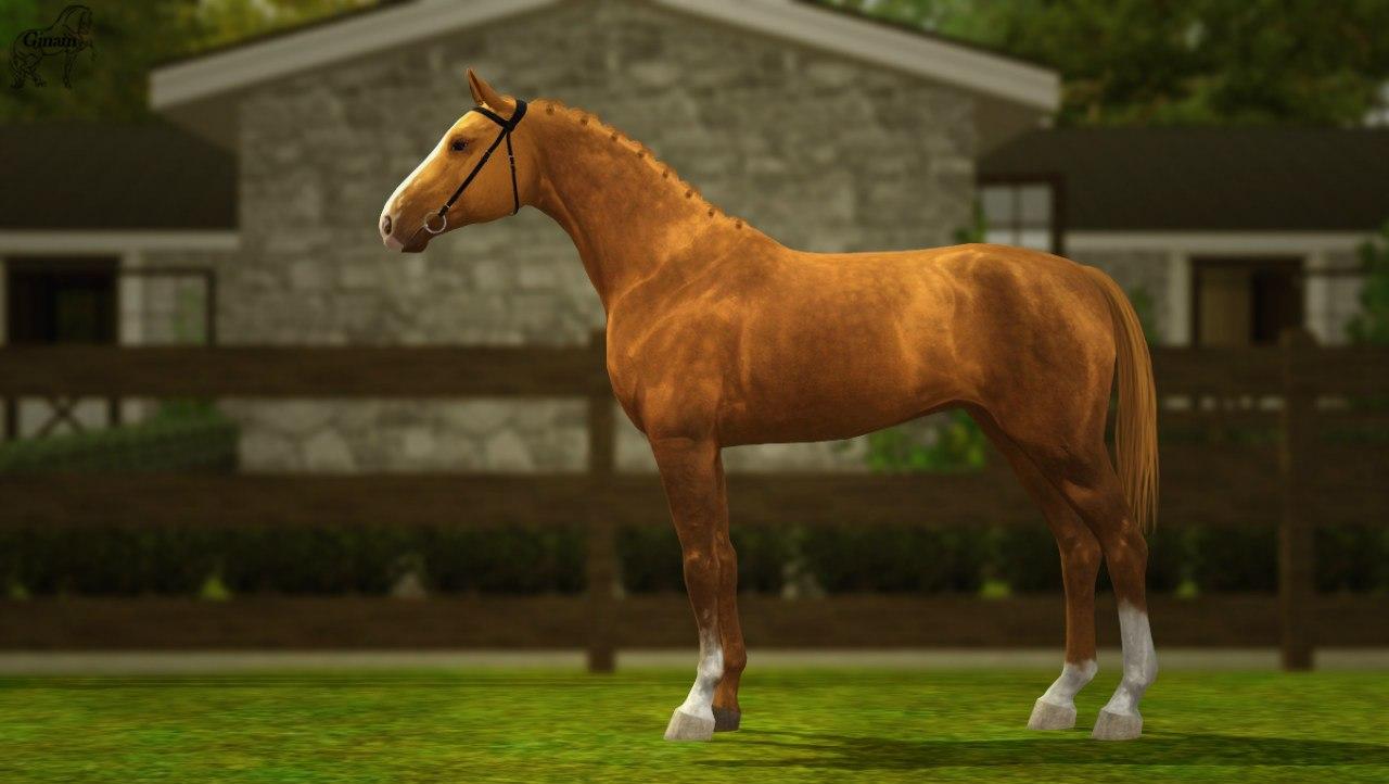Регистрация лошадей в RHF 1.2 - Страница 2 NTtVD92RpMw