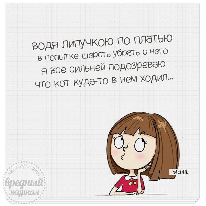 https://cs7052.vk.me/c635103/v635103666/68bd/MVPtV6Gjs_A.jpg