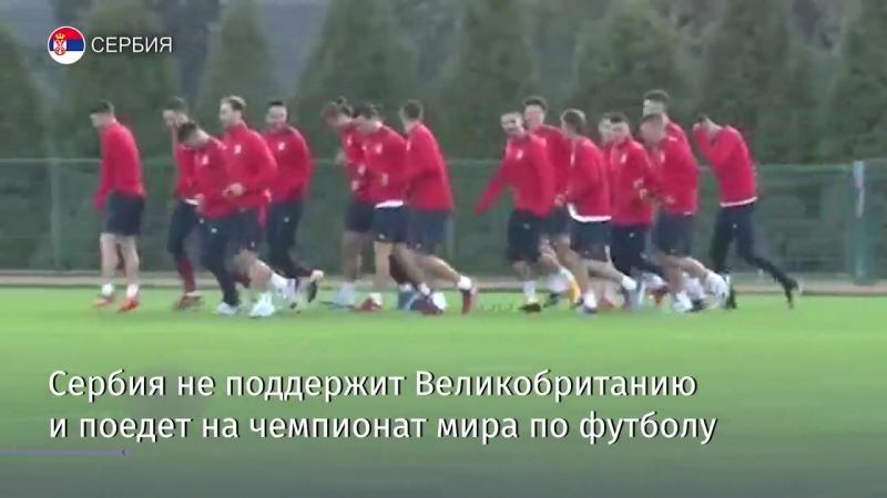 Сербия поедет на чемпионат мира по футболу в России