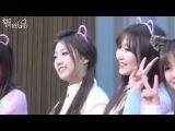 141226 러블리즈(Lovelyz) 부산팬싸