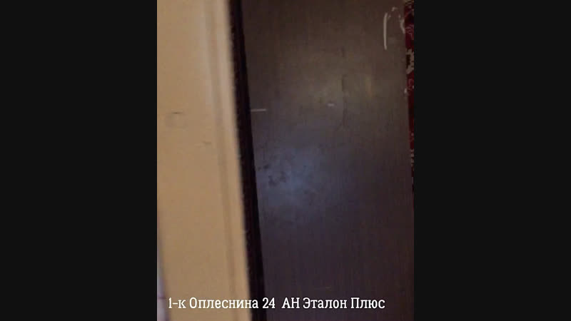 Обзор однокомнатной квартиры, Оплеснина 24