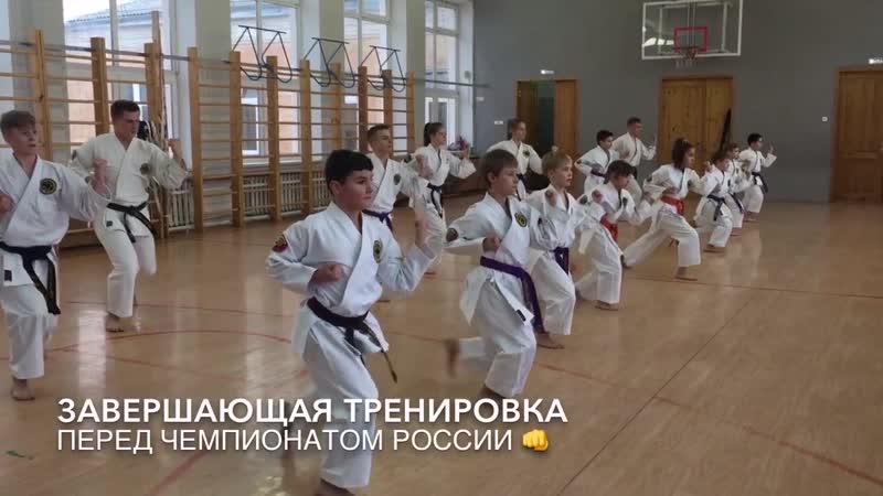 Завершающая тренировка к Чемпионату России по Каратэ WKC - Чебоксары 2019