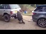 Tug of War Range Rover New vs Old
