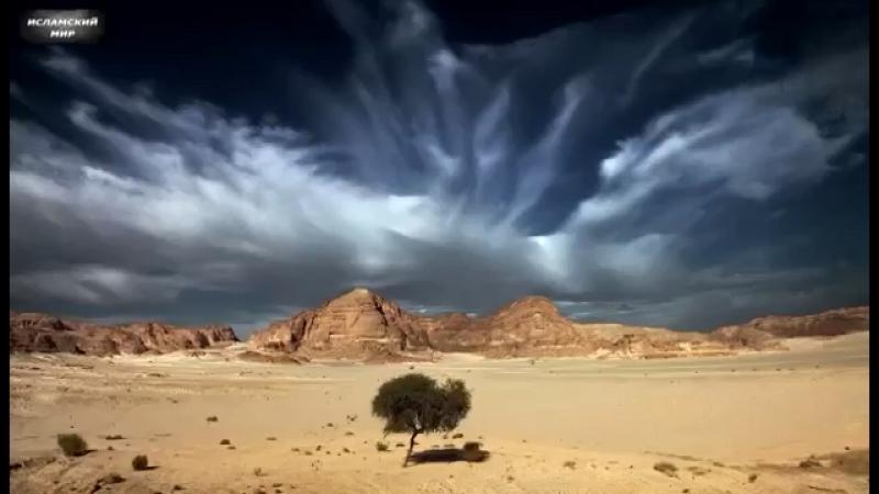 Пророк Муса и Грешник