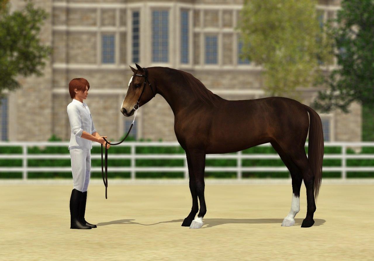 Регистрация лошадей в RHF 1.1 - Страница 40 J48Yy36qNbM