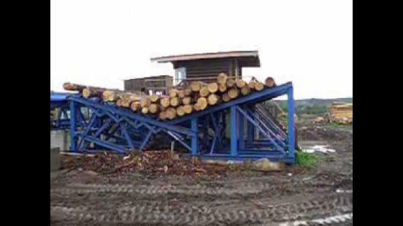 Линия сортировки бревен в Пасегово Кировская область