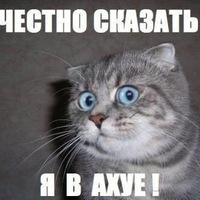 Никита Ризаев, 21 апреля 1997, Казань, id133939827