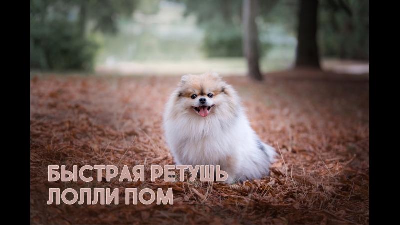Быстрая Ретушь Speed Retouche - Lolly Pom