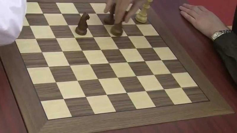 GM Karjakin - GM Grischuk. Classik Endgame (King, Elephant, Horse vs King)