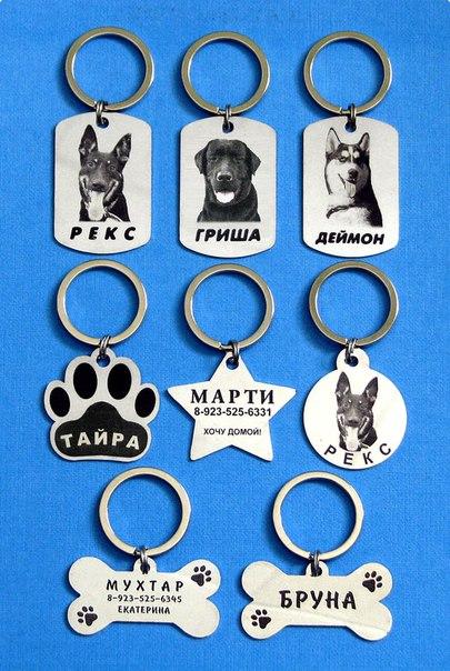 адресники для собак и кошек