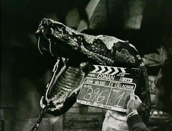 ÁLBUM DE FOTOS Conan the Barbarian 1982 - Página 2 MxQ-tG6-aqE