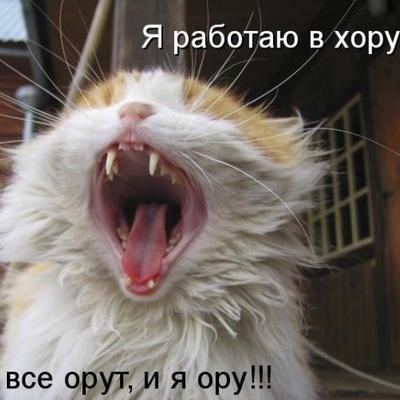 Федя Блошкин, 30 октября 1994, Москва, id227537866