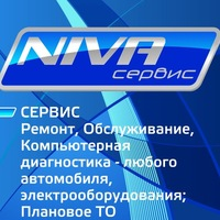 Логотип NIVA Сервис