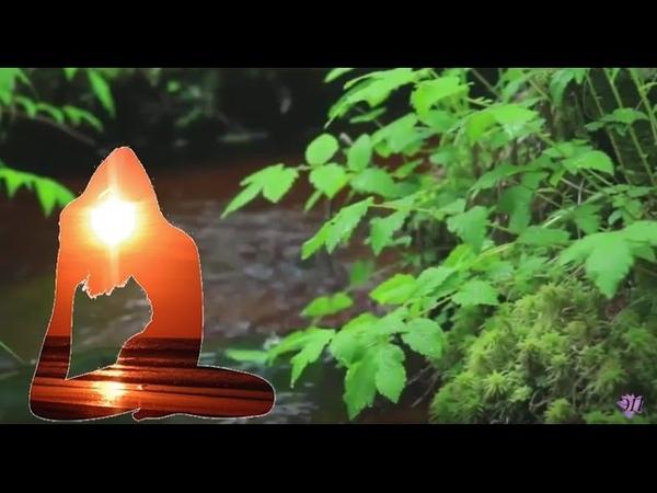 Целительная чарующая музыка Рейки со звуком ручья: волшебный час расслабления, гармонии, покоя.