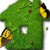 Дача,сад и огород - Чудо-урожай