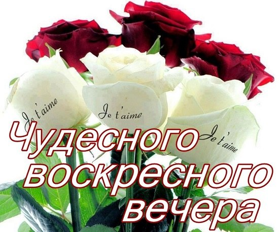 http://cs14106.vk.me/c7005/v7005834/2abba/5IK-1FJl22k.jpg