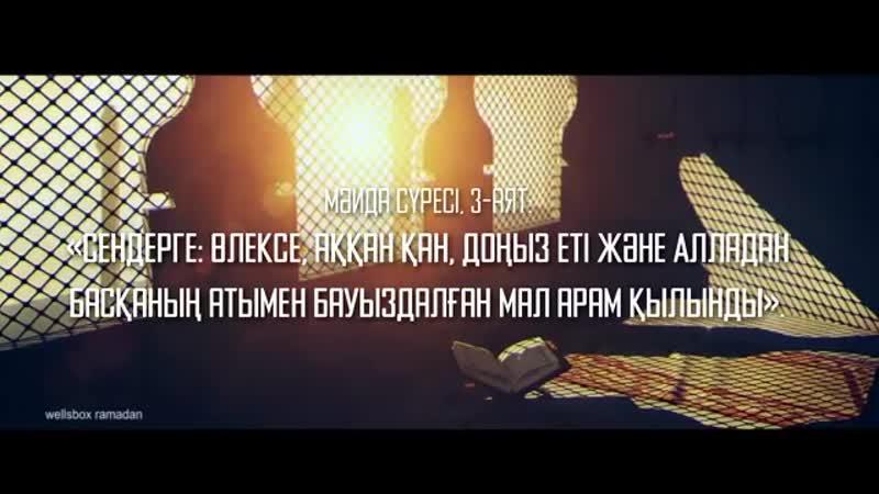 2yxa_ru__ran_m_zhizalary_34_SHosh_a_et__qv5vn0SgFjc.mp4