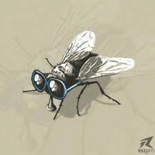 последняя муха осенние мухи вертлявы и кусачи. у них отрастает грызло и они становятся наглыми и кровожадными. за целое лето мухи уже успели посидеть на тёплых коровьих лепёшках, поползать по