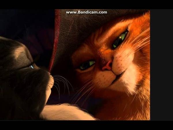 КОТ В САПОГАХ И КИСА МЯГКОЛАПКА - Мой котик