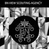 Bnview Agency