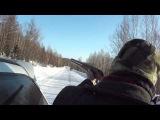 Охота на дороге промах
