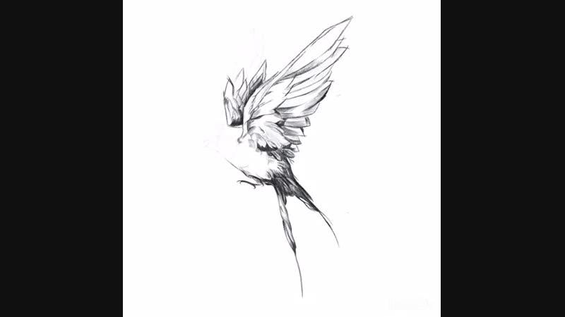 Make some sketch. Ласта
