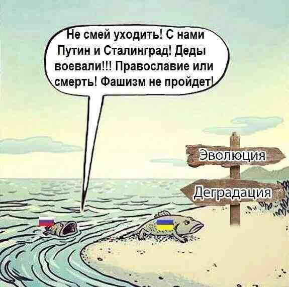 Совбез по-российски, страшилка для Донбасса, цель номер один. Свежие ФОТОжабы от Цензор.НЕТ - Цензор.НЕТ 6201