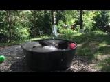 Красная книга. Медведь по имени Такода принимает ванну