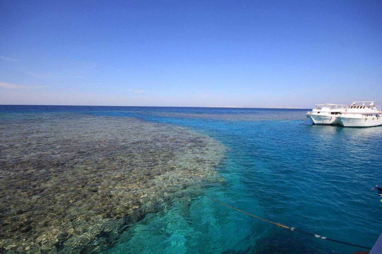 Open water diving Tz3ey_tk4Ms