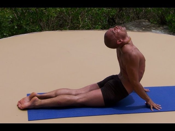 Hatha Yoga: Full 12 Asana Session
