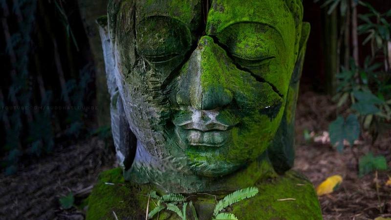 Buddha Nature مولانا Mystical Melody
